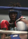 Palermo Club hosts 'Thanksgiving Feast' of boxing